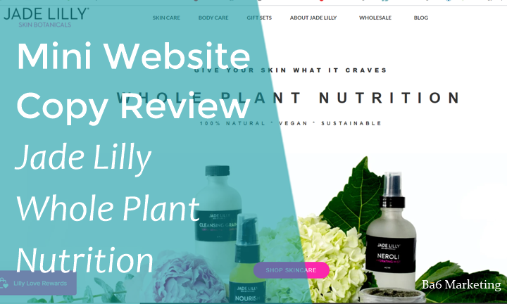 Mini Web Copy Review – Jade Lilly – The value of a good value proposition