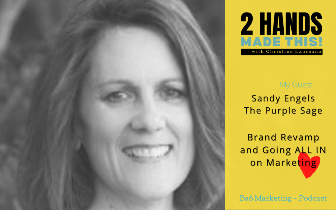 Episode 12 – Brand Revamp And Going ALL IN on Marketing with Sandy Engels of The Purple Sage